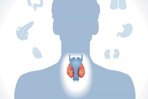 Endocrinologie en stofwisselingsziekten